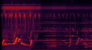 """Klangspektrum des Beginns der """"Great Animal Orchestra Symphonie für Orchester und wilde Soundscapes"""" © Studioaufnahme in Cardiff, Großbritannien; Spektrogrammvideo: Andreas von Bubnoff"""