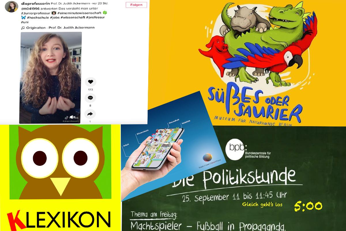 Collage Screenshots Websites zu Lernen: Marie-Luise Raupach/Grimme-Institut